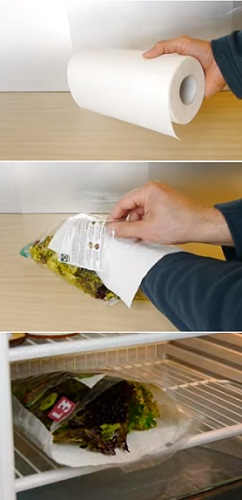 easy way to keep salad fresh for a long time in fridge